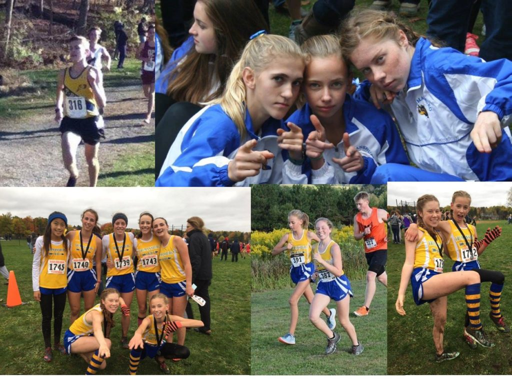 TCSD CC GROUP