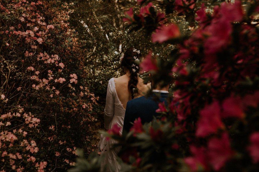 Alternative & non-traditional wedding photography. Blue Mountains, Sydney, Melbourne, TAS & Perth elopements. Destination weddings. Vegan wedding & elopement photographers