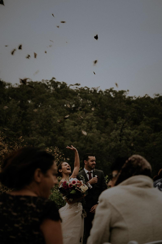 g_c wedding - kings _ thieves elopement wedding photography - blog 49.jpg