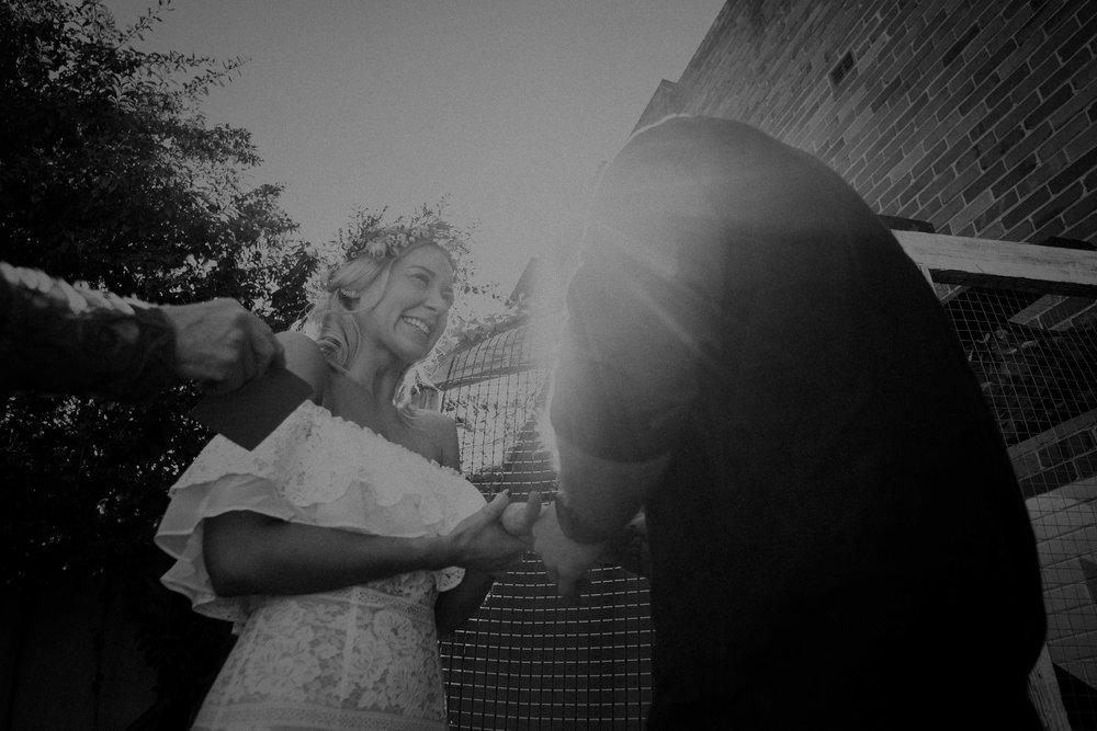 kings _ thieves - beth _ corey backyard airbnb elopement sydney - submission -142.jpg