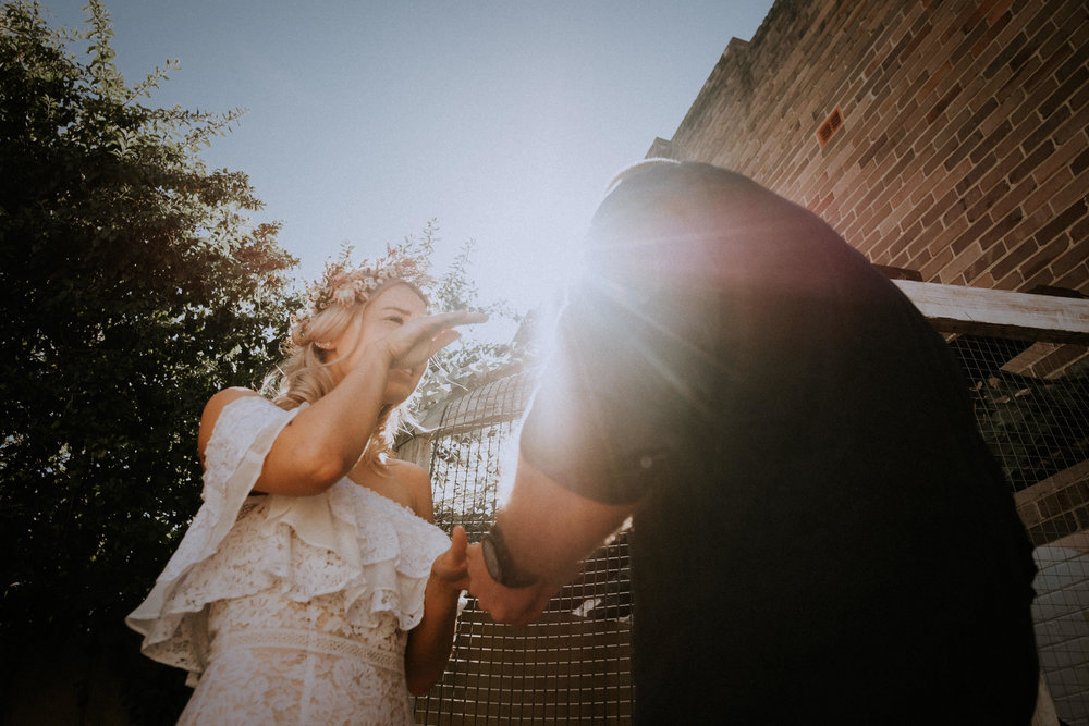 kings _ thieves - beth _ corey backyard airbnb elopement sydney - submission -139.jpg