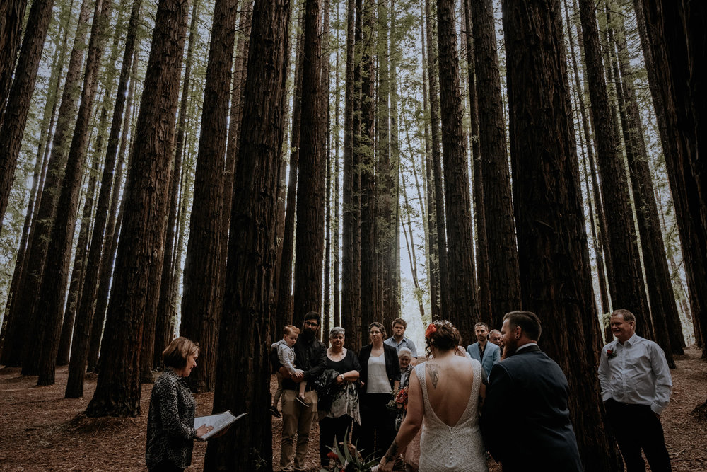 A bride and groom elope outdoors in a redwood forest