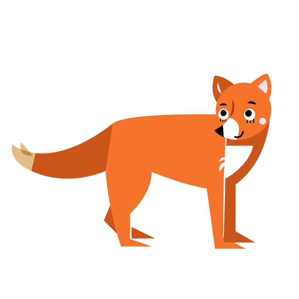 Fox - Vector Illustration © Emeline Barrea, All rights reserved