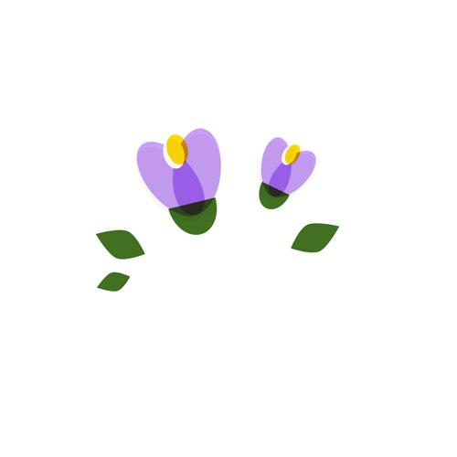 Flowers - Vector Illustration © Emeline Barrea, All rights reserved