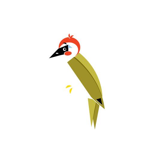 Woodpecker - Vector Illustration © Emeline Barrea, All rights reserved