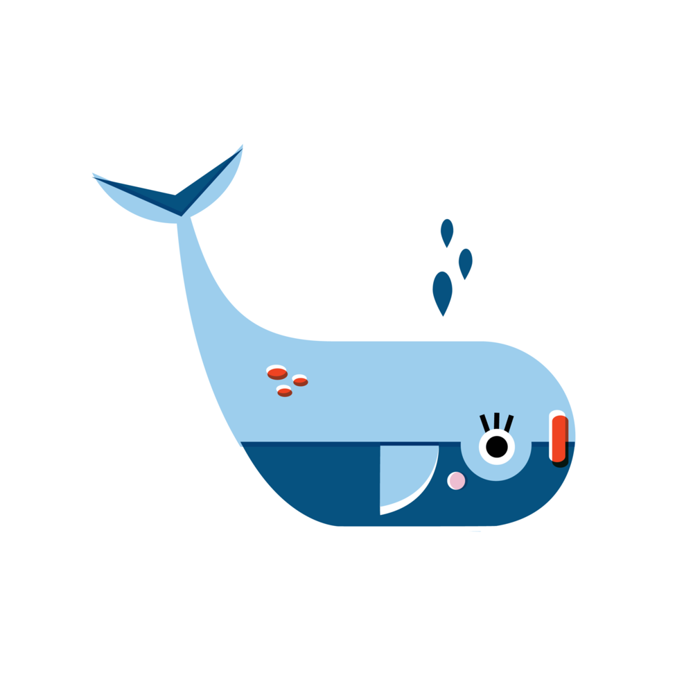 Whale - Vector Illustration © Emeline Barrea, All rights reserved
