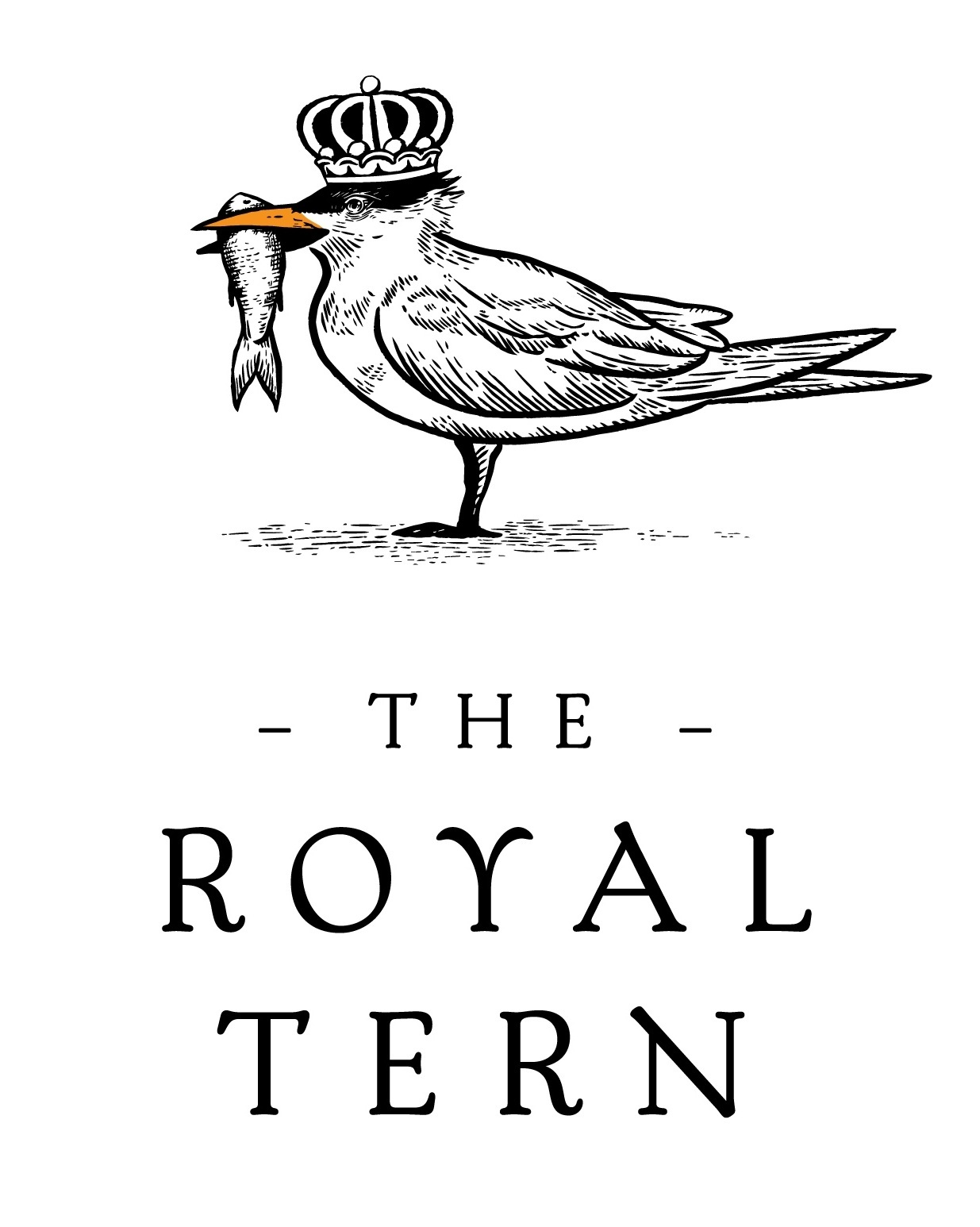 The Royal Tern