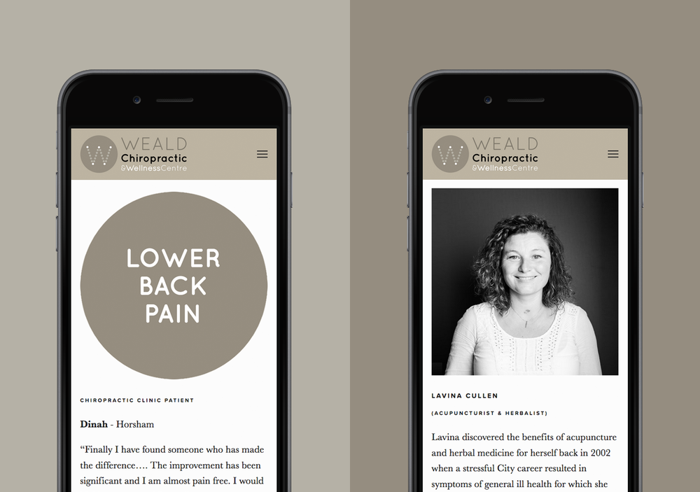 Chiropractic & Acupuncture business website design