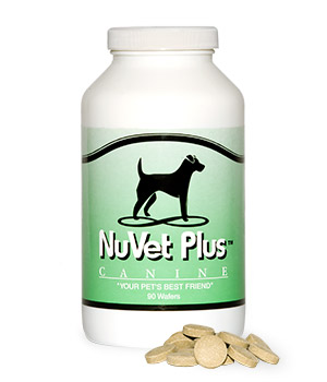 """Nuvet Plus K-9 Wafers - Immune System SupportNatural, Human Grade IngredientsFormulated to combat free radicalsKeeping your pet's immune system strong is crucial in today's environment. Household toxins, fertilizers, pesticides, and even many of today's pet foods leave your pet's immune system susceptible. Regular and even premium brand pet foods can contain toxins, bad bacteria, and """"meat by-products"""" (an industry term for anything other than meat). Other common ingredients are fillers like corn, wheat and barley. These food ingredients and other environmental factors are prime sources for poor health in your pet.Our team of pet industry scientists, veterinarians, and medical specialists created NuVet Plus® to be a high-quality supplement that incorporates a precise formula of antioxidants, amino acids, vitamins, minerals, enzymes, herbs and more.NuVet Plus® brings together vital ingredients that perform synergistically to help improve your pet's health and keep them healthy. Our supplement is made using Natural, Human-Grade ingredients that are formulated in an FDA-registered Pharmaceutical Laboratory."""