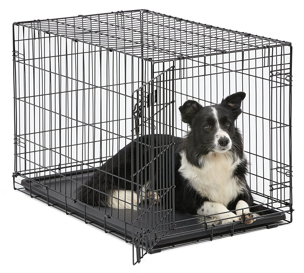 Medium Dog Crate - For Medium Mini GoldendoodlesSingle door folding metal dog crate, iCrate measures 42L x 30W x 28H inches & is suitable for large dog breedsDog crate includes a FREE divider panel, durable dog tray, carrying handle,
