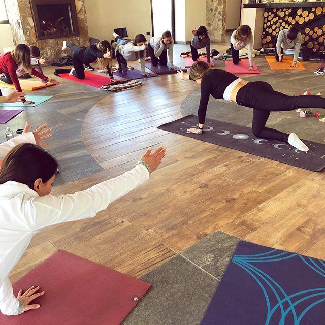 SLOW FLOW ✨🌷cuando conectas cuerpo y alma logras estar en el aquí y el ahora. Ayer vivimos una práctica de yoga deli con @danielaguerrero en nuestro 3er encuentro Ama y Nutre. Gracias de todo corazón a todas las increíbles mujeres que nos acompañaron y que hicieron este día increíble. Pronto les compartiremos más fotos 🙌🤩🌸