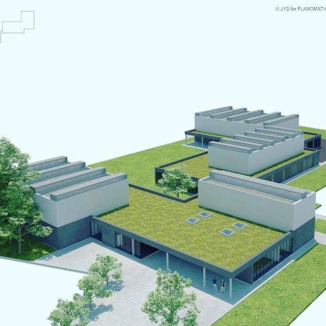 Vorige week hebben we dit groendak van 1500m2 te Brugge afgewerkt voor de firma Alheembouw. We kijken al uit naar de dronebeelden. #ktabrugge#groendak#brugge#scholenvanmorgen#architecture #construction@scholenvanmorgen @optigroen @alheembouw