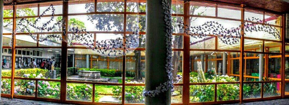 Palomas por la Paz  Facultad de Quimica, UNAM