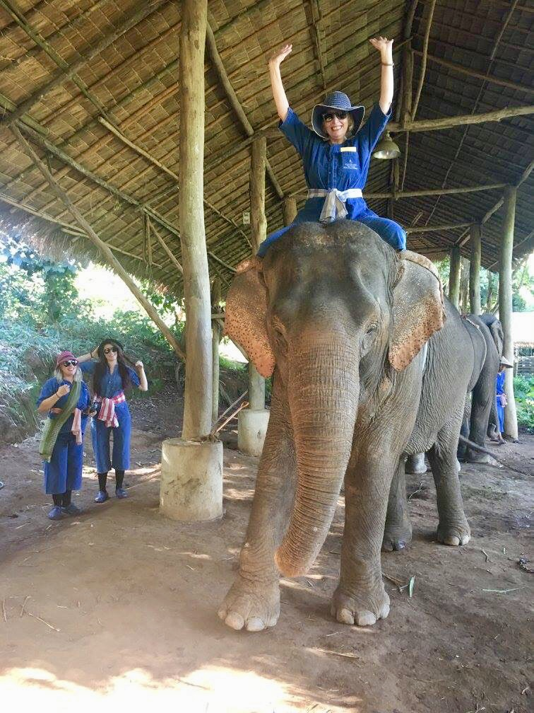 "- Linda and her two daughters went to Thailand for her younger daughter Christina's 30th Birthday.One of their stays was at the Four Seasons in the Golden Triangle where they created an elephant sanctuary. Not only did her daughters ride them with the guides, they were able to feed them at breakfast time!""The trip was so rewarding,"" says Linda. They chose Thailand because not only were they looking for beauty but were interested in spirituality, as well. It's a trip all three of them still treasure."