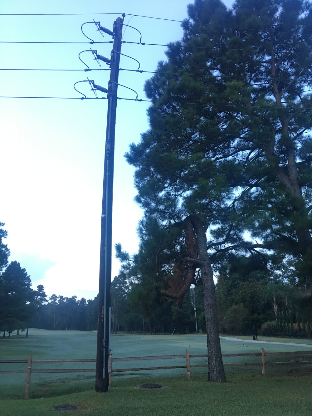 The telephone pole and tree - perfectly placed before we were born so that they would be exactly where we needed them to save our lives. Thank you Father for your provision and mercy.