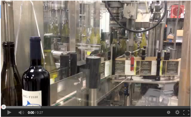Bottling the 2011 Chardonnay
