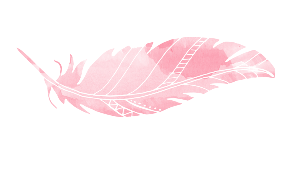 pink_feather-e1456782775964.png