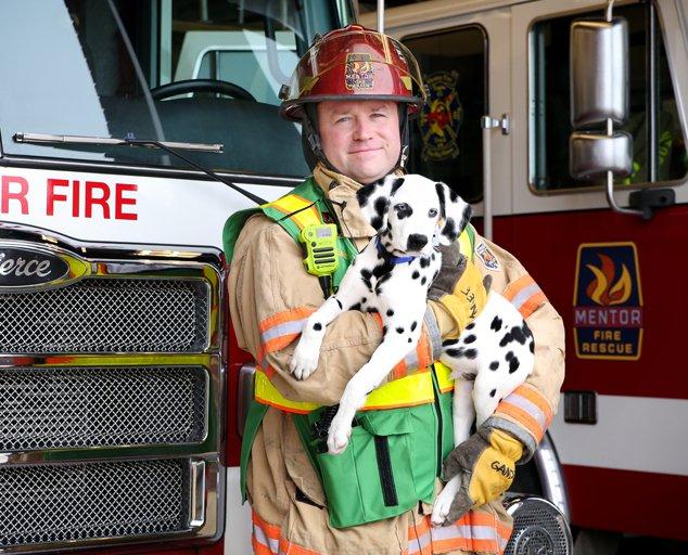 Mentor-fire-dalmatian-634x512-Bridget-Gandee.jpg