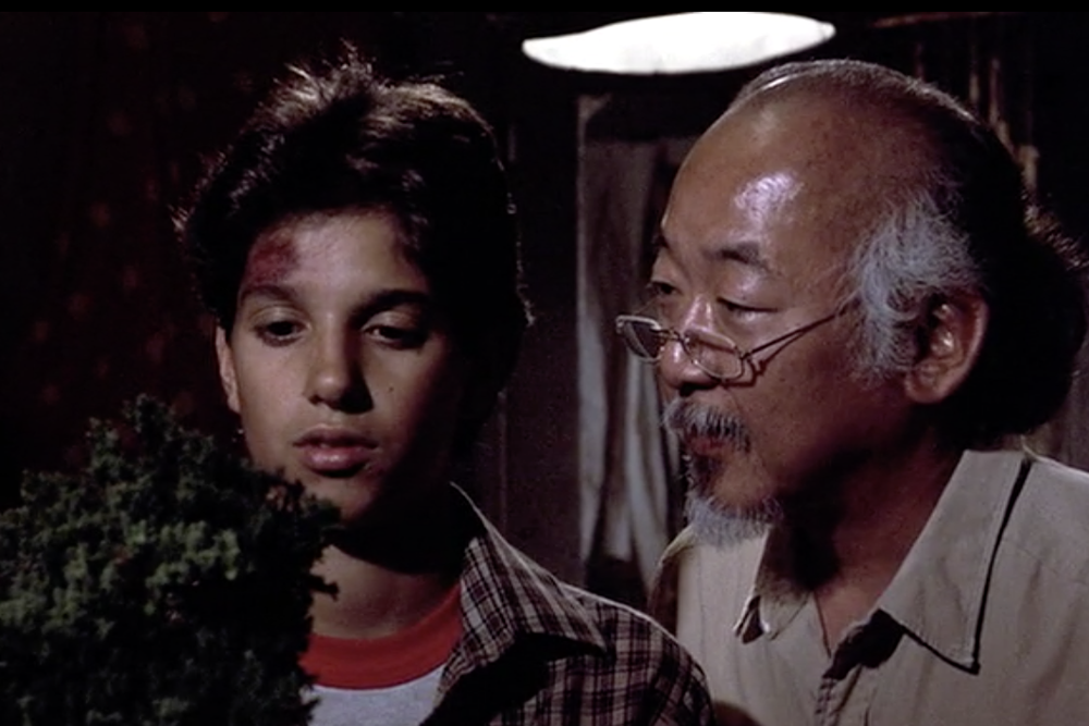 4 Things That Make Mr. Miyagi a Great Advisor