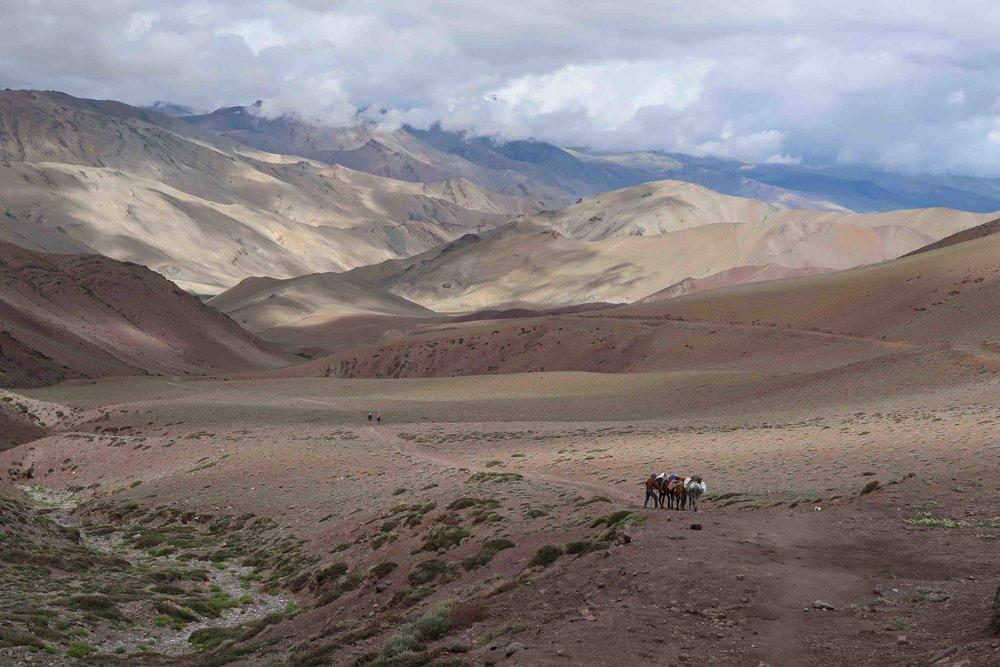 Trekking to Tsaling on the Rumtze - Tso Moriri Trek in Ladakh, India