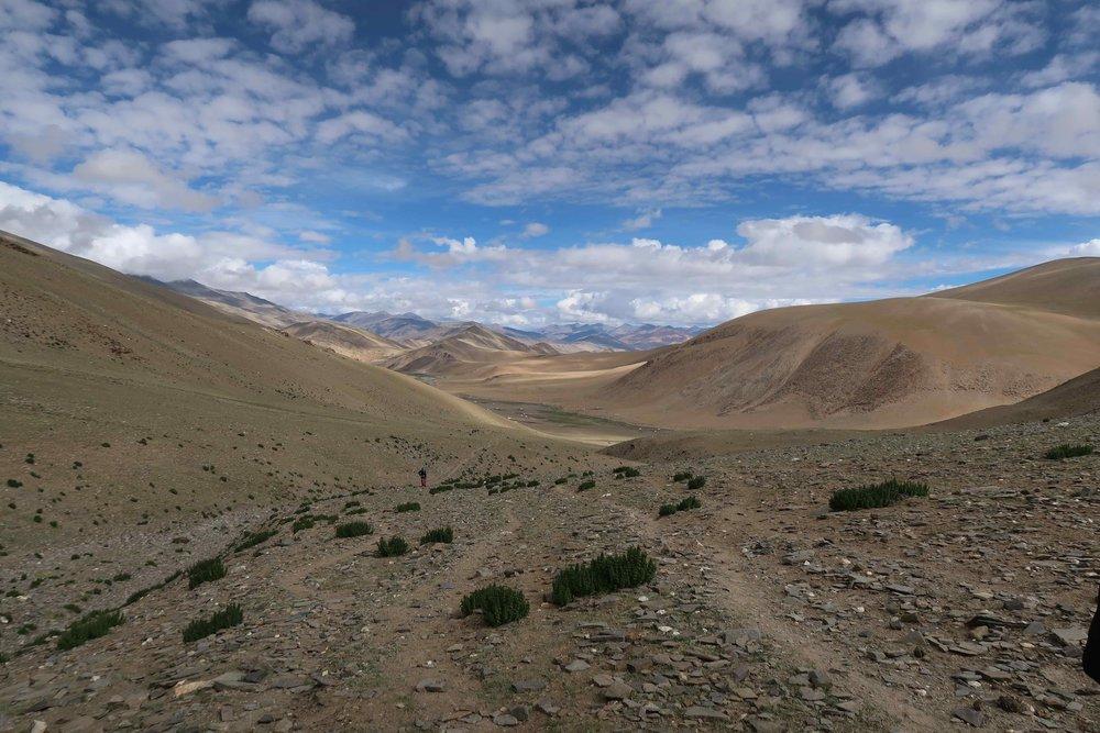 The Rumtze - Tso Moriri Trek in Ladakh, India