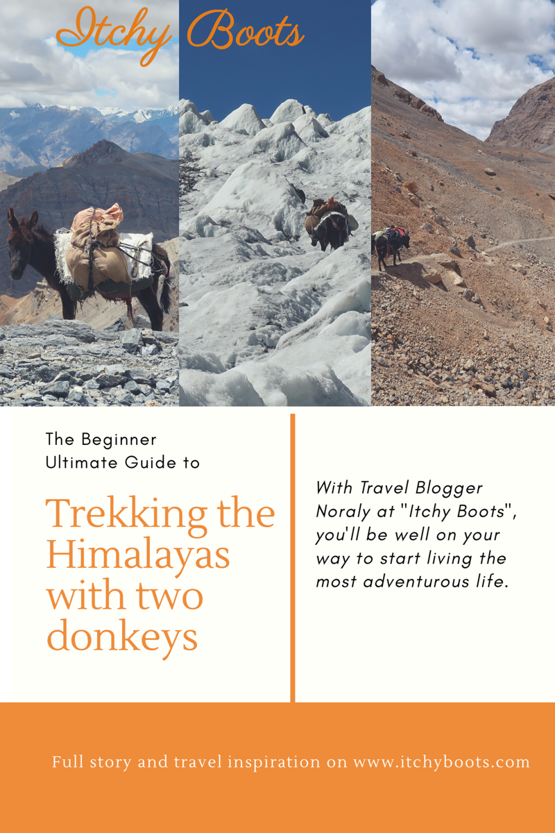 Trekking_himalaya.png