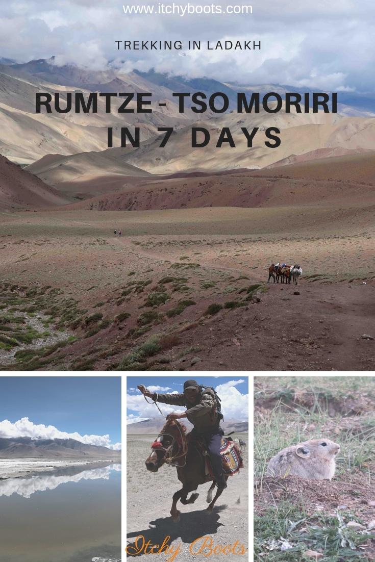 Rumtze - Tso Moriri Trek in Ladakh, India is by far the best trek you can do in Ladakh!