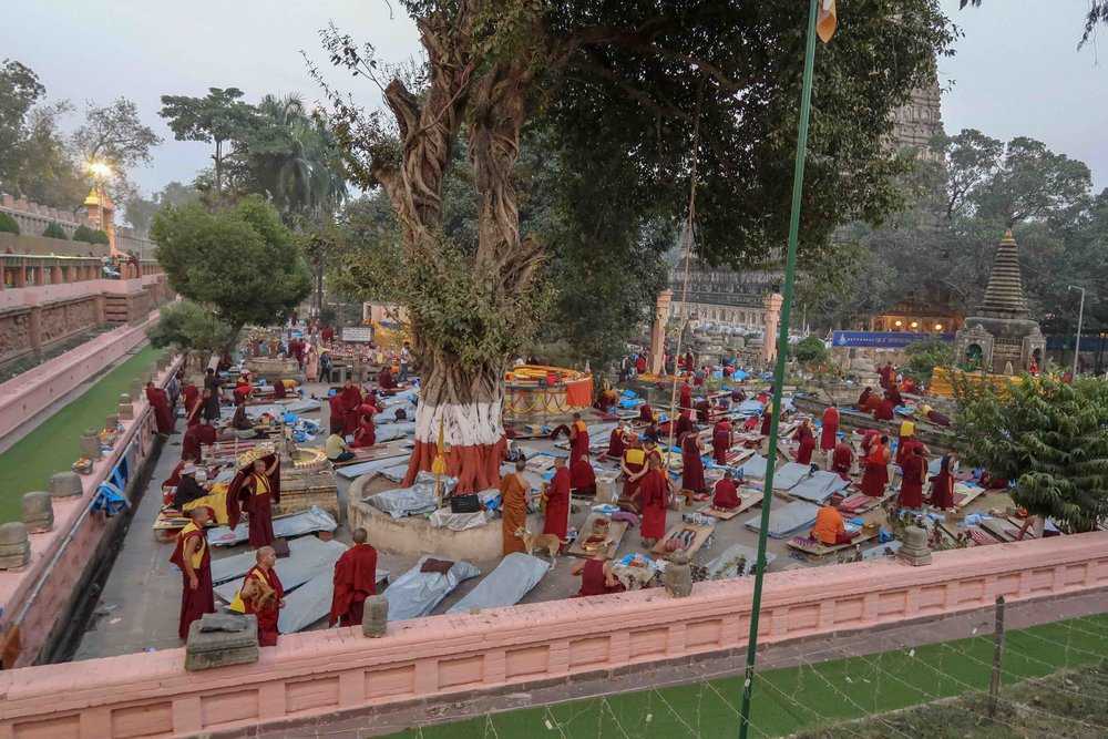 Buddhist monks doing endless prostrations at the Mahabodhi Temple complex in Bodhgaya, India. It was here were Buddha reached enlightenment underneath a Bodhi tree and a very important Buddhist site.