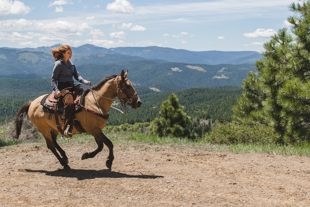 Greenhorn Ranch Wranglers ensure the safety of all riders, especially when it comes to guests that wish to lope or canter. These guests must demonstrate proper position and control for a western saddle