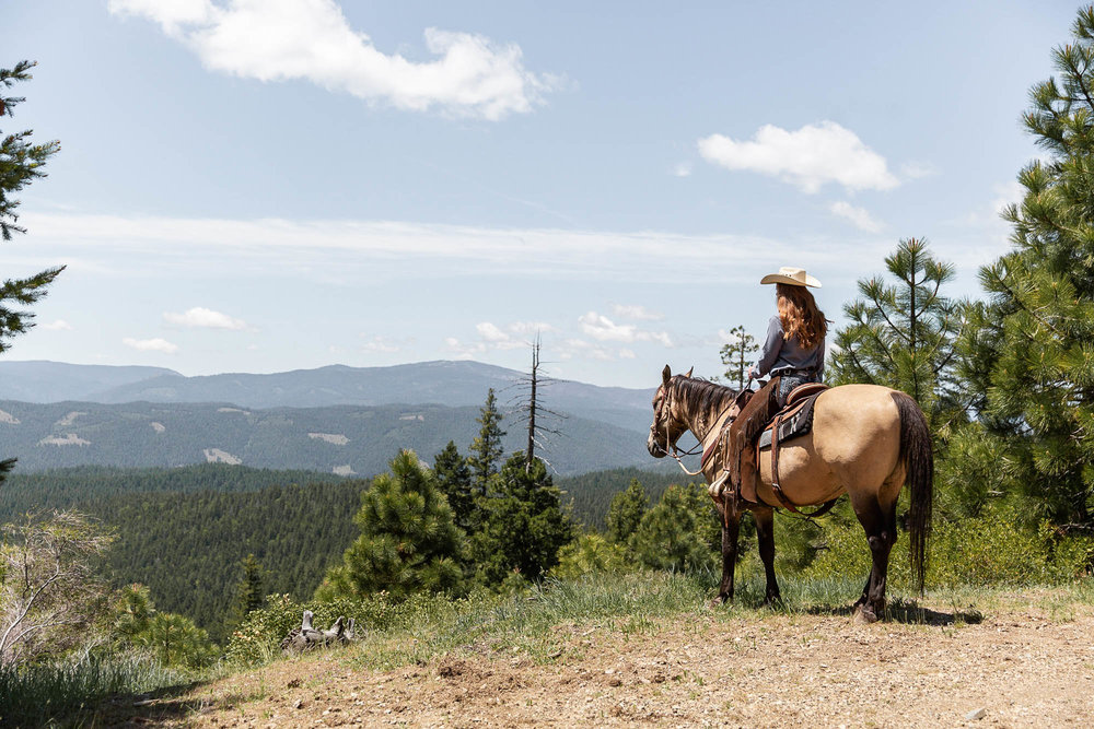 Greenhorn Ranch is what a Dude Ranch Vacation is all about