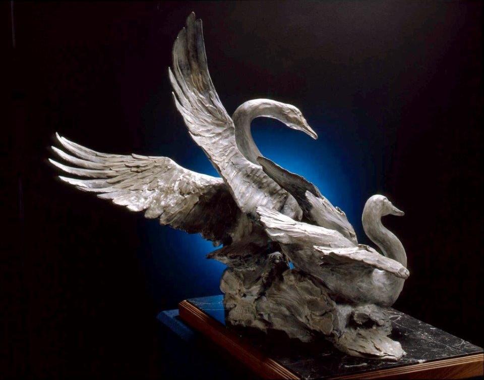 """""""Tundra Swans"""""""