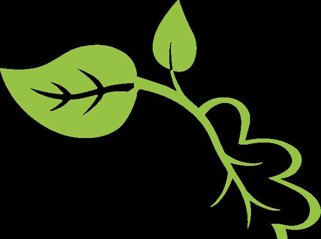 Natural Wood Solutions — Natural Wood Solutions