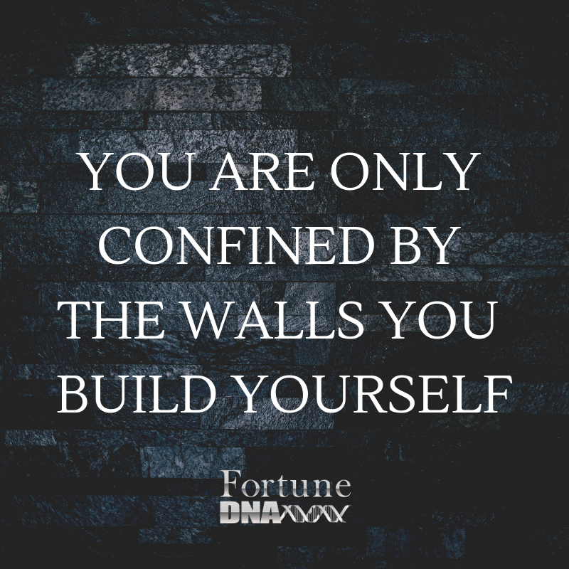 You are only confined by the walls you build yourself.png