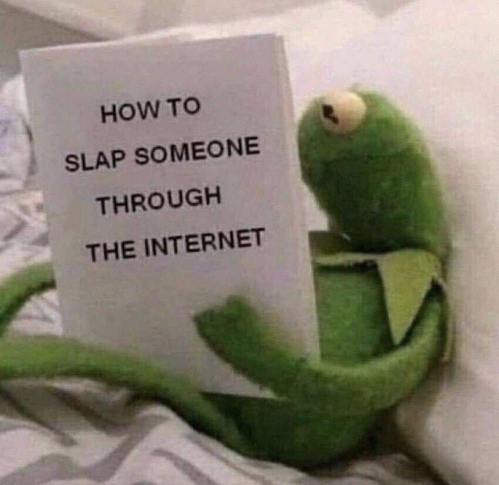 how to slap someone through the internet.jpg