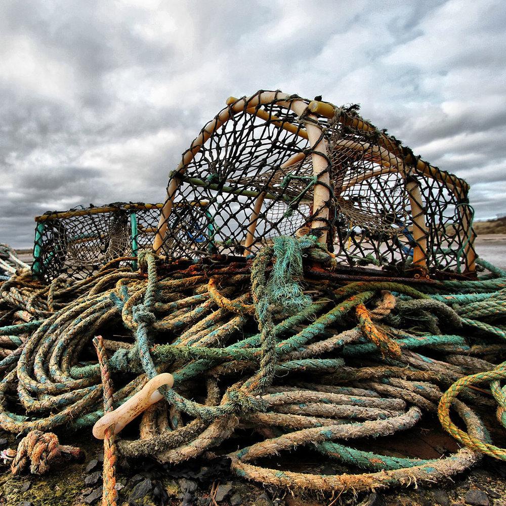 crab_nets.jpg