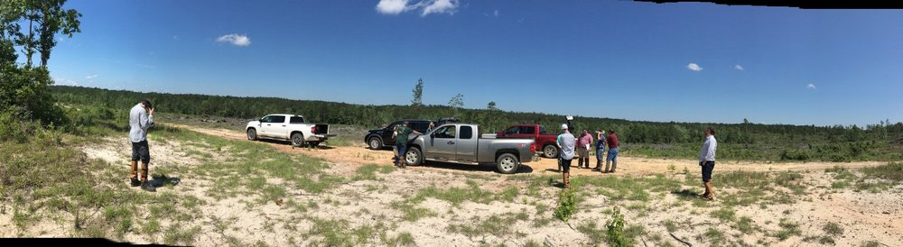 Filming on recently harvested land.