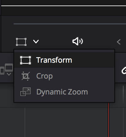 Transform, Crop and Dynamic Zoom activation control in the Source and Program Monitors