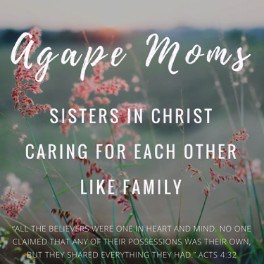 Tomorrow our    Agape Moms    tribe 👩👩👦👦👩👩👧👧 will be taking some time to really live like sisters who are there for each other in the highs and lows of life.🙏🏼 We had a little baby celebration planned but then during the week, other crazy circumstances and difficult things have come up. So tomorrow we will eat cupcakes and then we will get on our knees to pray, while also taking up a love offering for one of our sisters in need. This is what it means to be the family of God. You are always welcome in our tribe! Thursday's at 9am. Message me for details