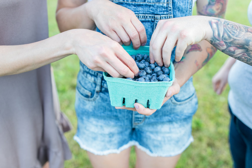 Locally Obsessed, BC Blueberries
