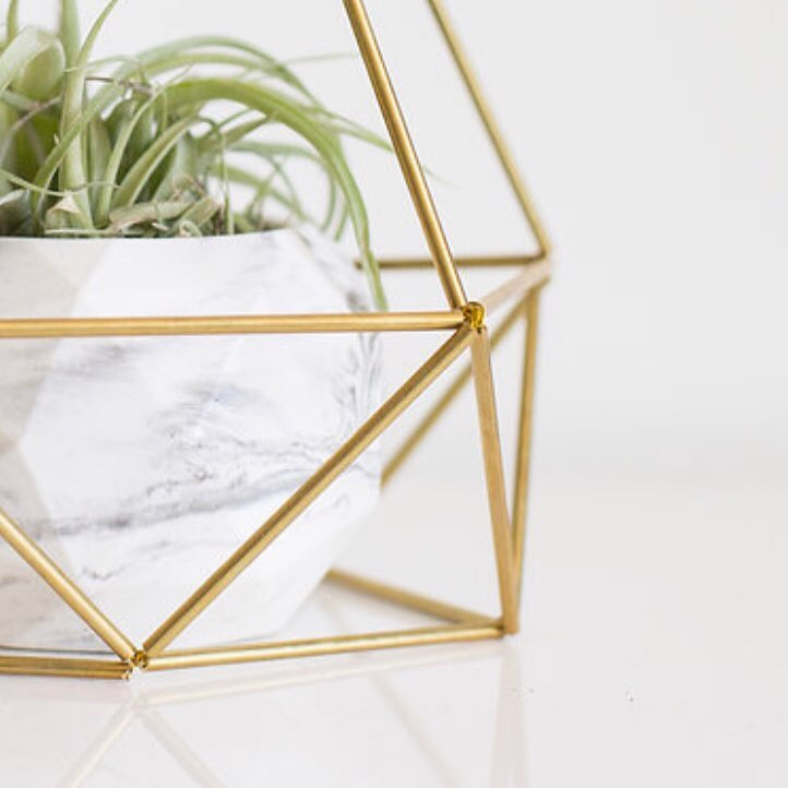 Air Plant Holder by Himmeli West Designs