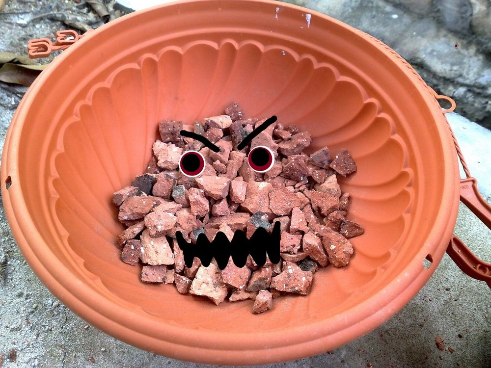 Bricks in Bottom of Pot.jpg