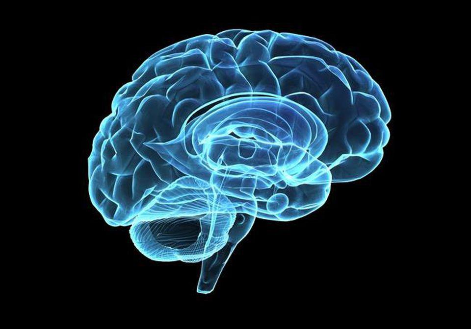 https---blogs-images.forbes.com-alicegwalton-files-2015-02-0728_deep-brain-stimulation_650x455.jpg