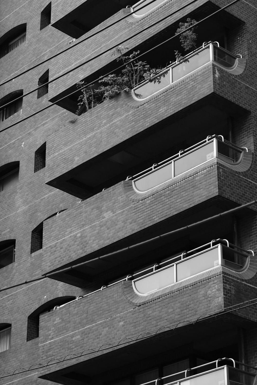 Japan_architecture-building_copyright-melisdainon.jpg
