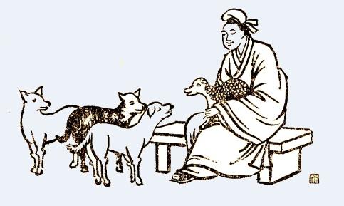 Introducción a la MVTC - Estos seminarios introductorios abarcan los prinicipios fundamentales de la Medicina Veterinaria Tradicional China (MVTC) y sus 4 ramas principales para la medicina veterinaria: Acupuntura, Medicina Herbal China, Terapia de Alimentación y Tui-na.
