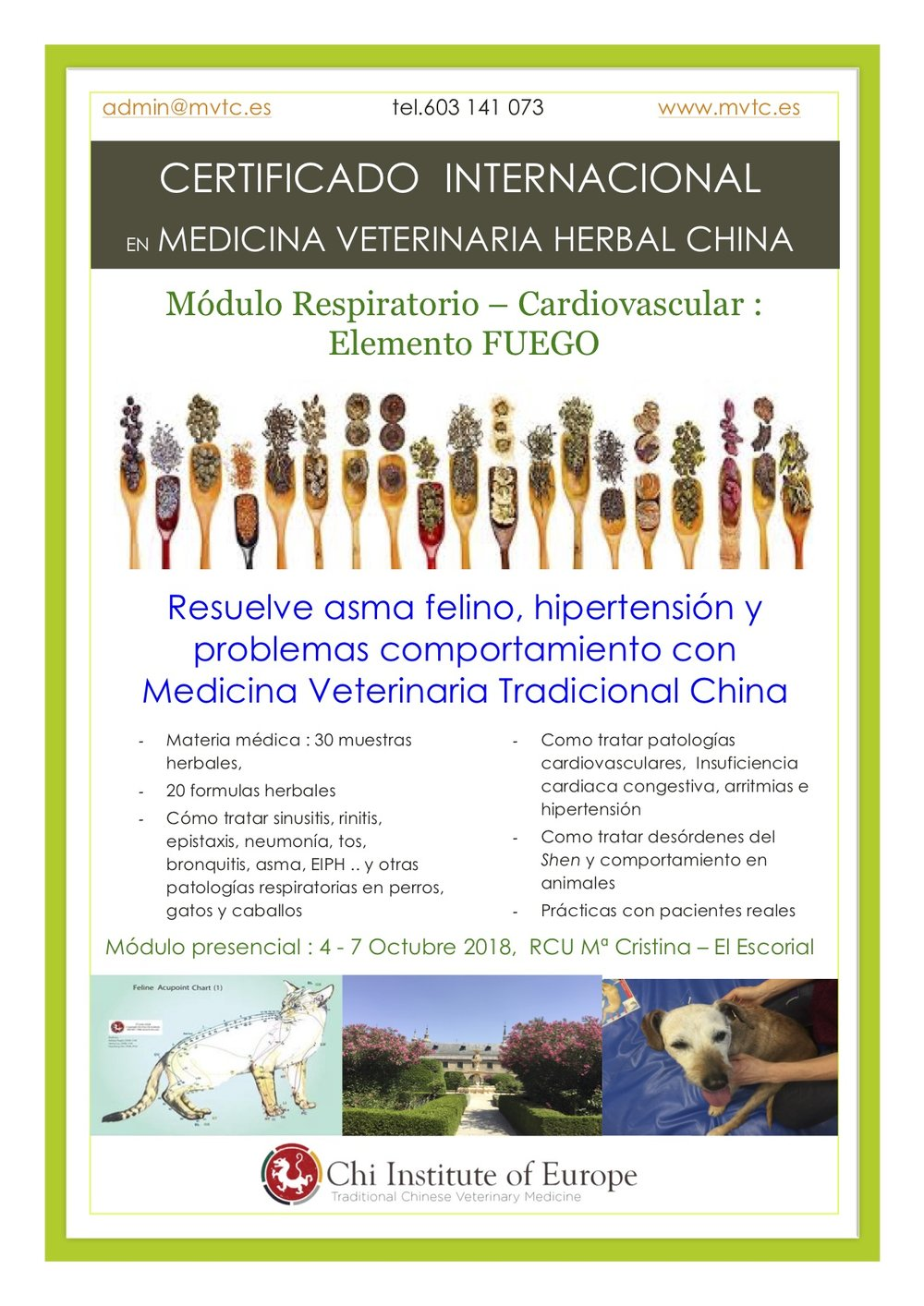 herbal cardio poster 3 .jpg