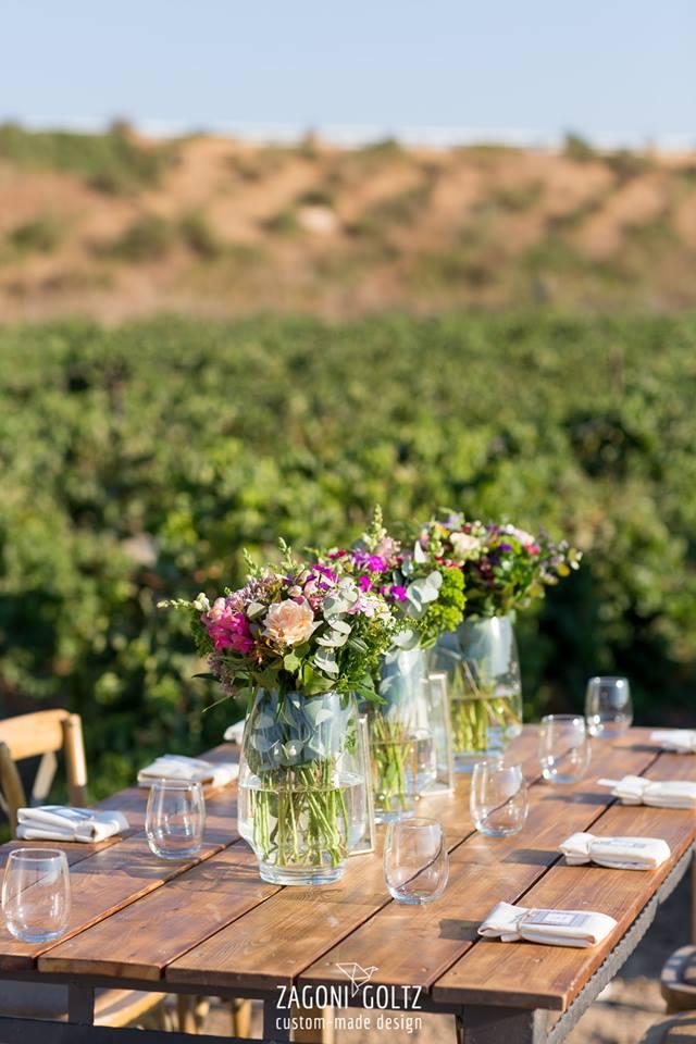 vineyard magic -