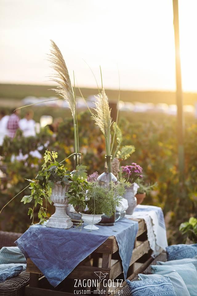 Vineyard Day Dreaming -