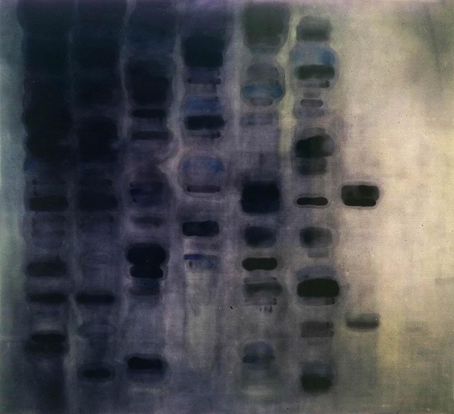 "Gene-Blur, 103"" X 105"", 1989"