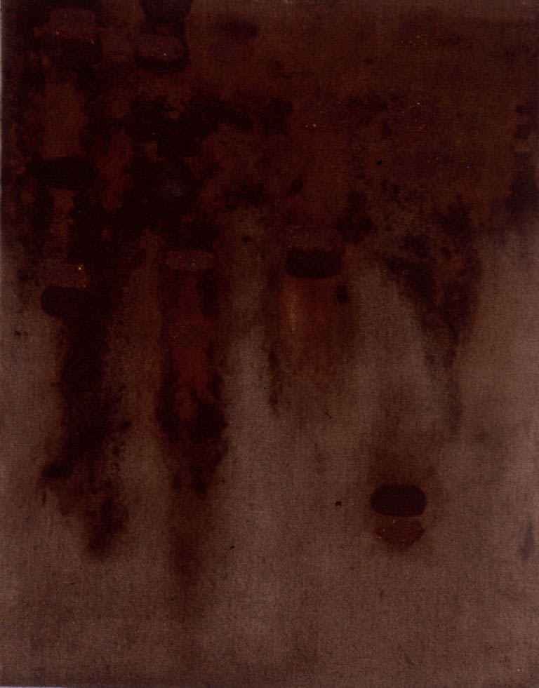 "Rusted Beyond Recognition, 18"" x 14"", 1996"
