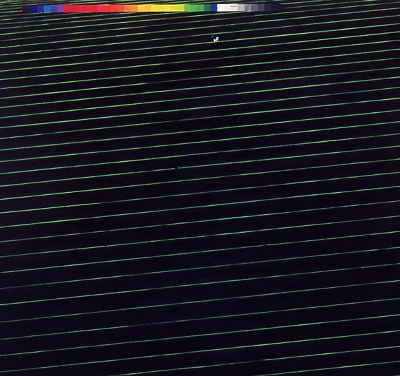 "Black Fibre Sense Net, 108"" x 108"", 1990"